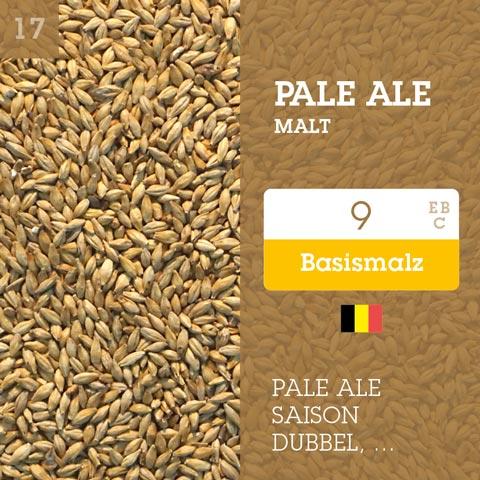 Pale Ale Malt 9 EBC - Belgisch