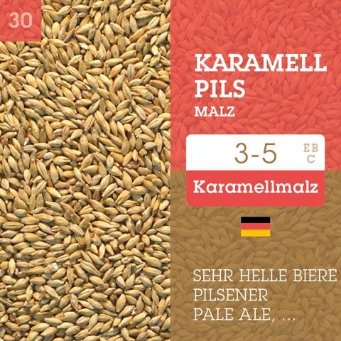 Karamell Pils Malz - Cara Pils 3-5 EBC
