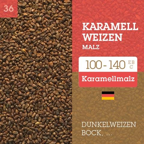 Karamell Weizen Malz - Cara Wheat 100-140 EBC